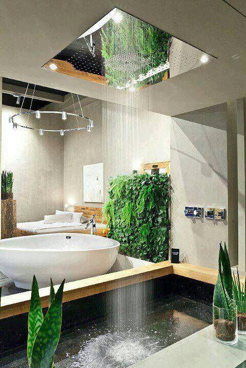 Bathroom with rain shower natural light ceiling