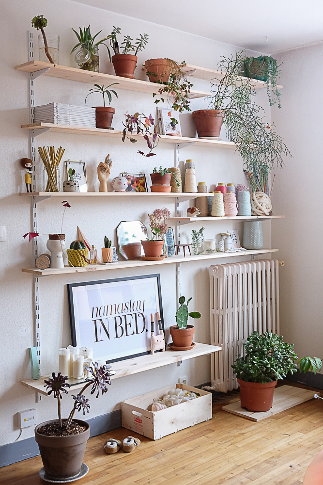 Living Room Wall Shelves design With mall plants