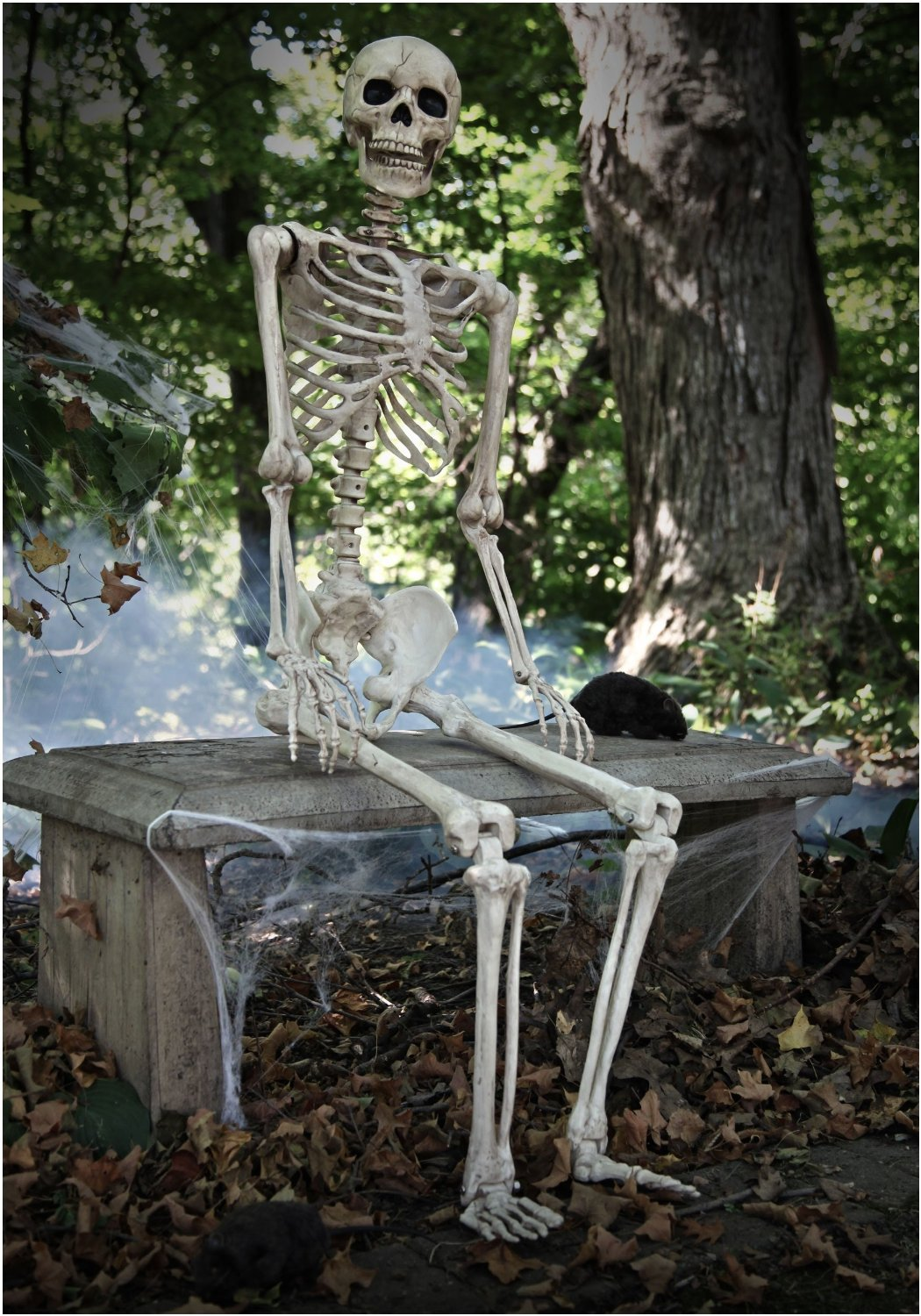 Skeleton Halloween Decorations