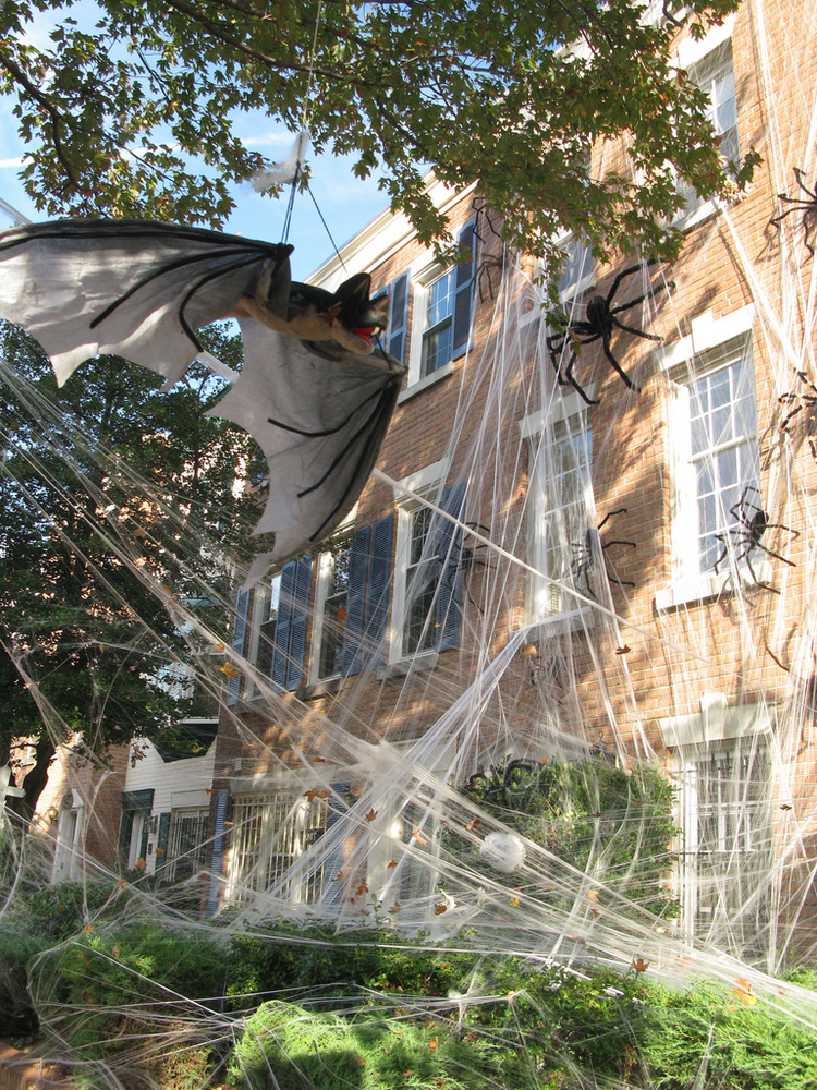 spider webs halloween Exterior decorations