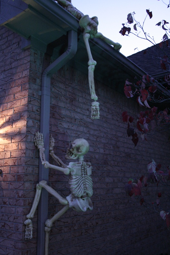 Indoor outdoor halloween skeleton decorations ideas for Outer decoration of house