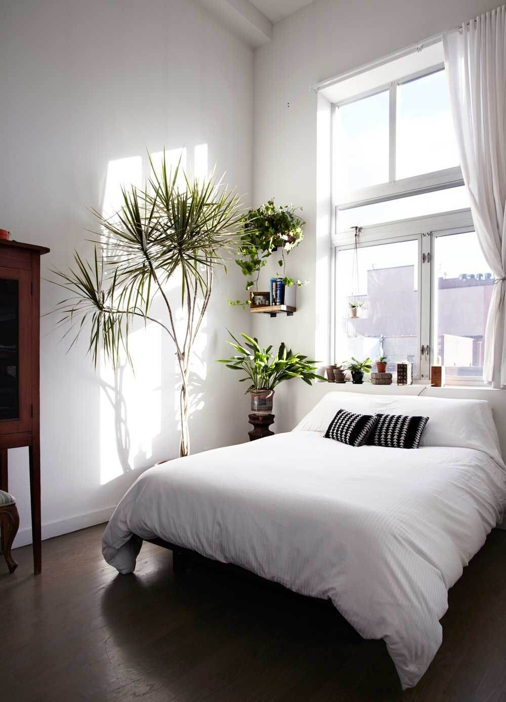 minimalist bedroom ideas with plants decoration
