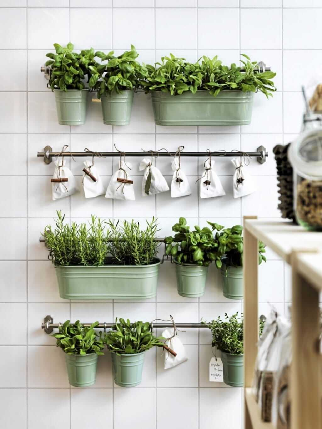 Why you Need a Herb Garden in Your Kitchen