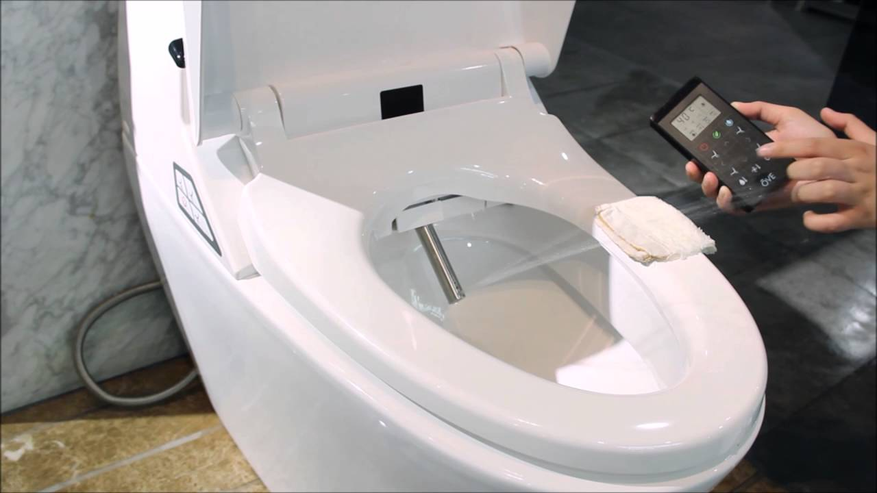 The Features of Smart Toilets