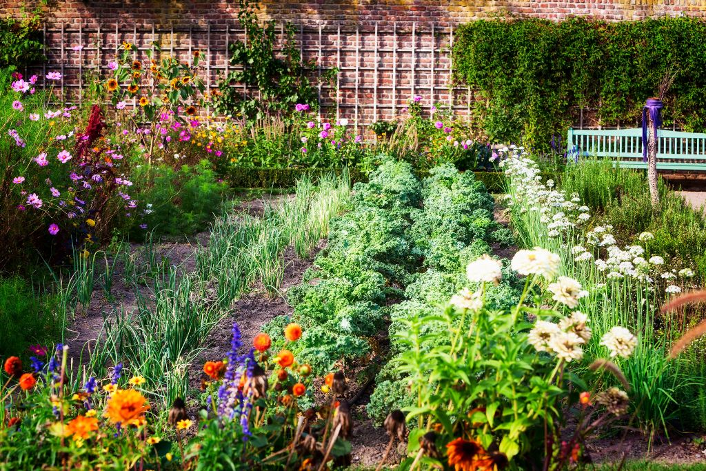 What Type Of Garden You Want To Grow